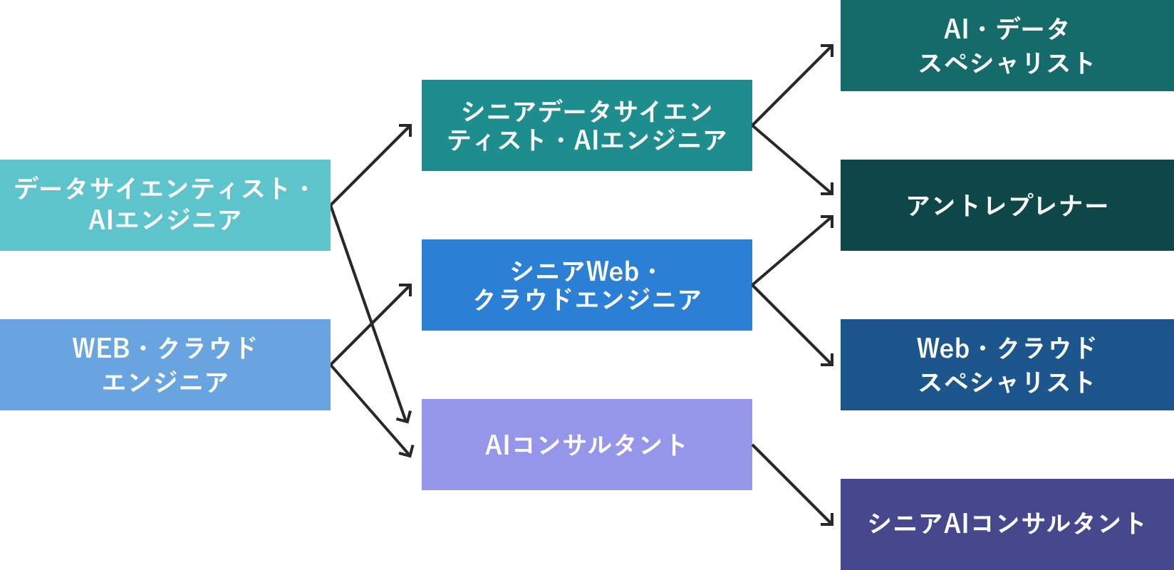 開発部 キャリアパス 図